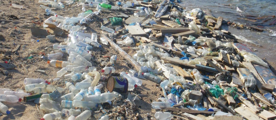 The Impact on Environment Due To Plastic Water Bottles
