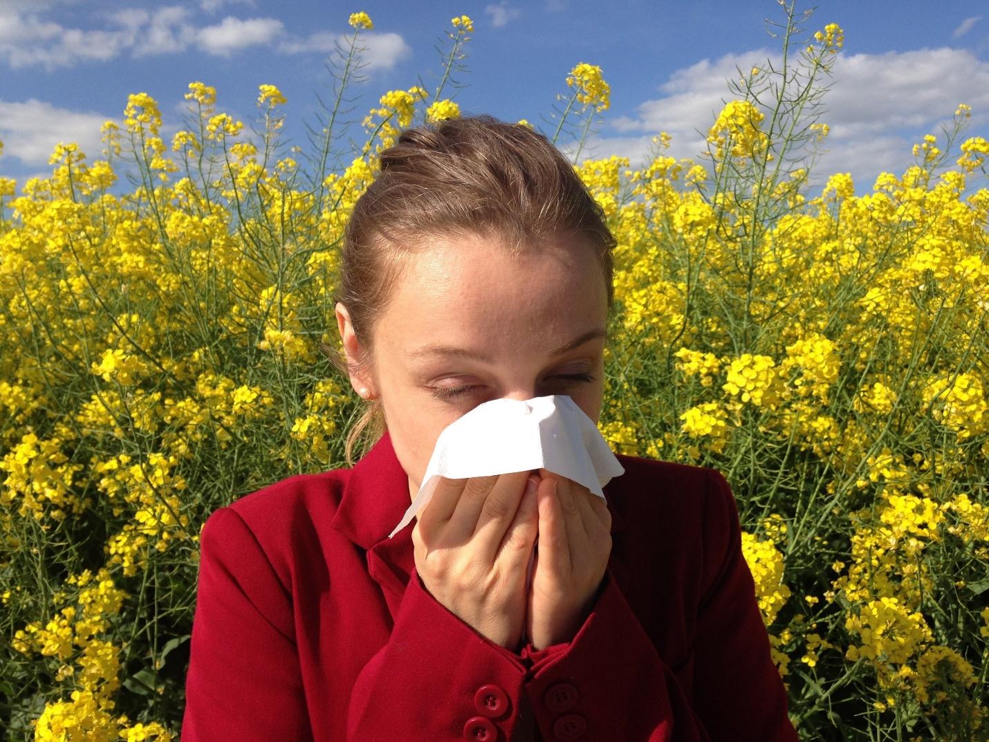 Free stock photo of allergen, allergic, allergy