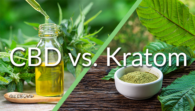 Kratom vs CBD: Which One Provides More Energy?