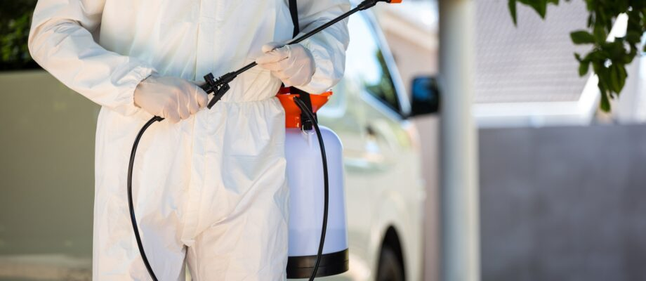 Own Rental Properties? Why Pest Control Should Be Your Priority
