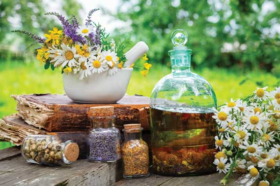 Herbal Tinctures for Health and Well-Being - Mother Earth Living   Healthy  Life, Natural Beauty