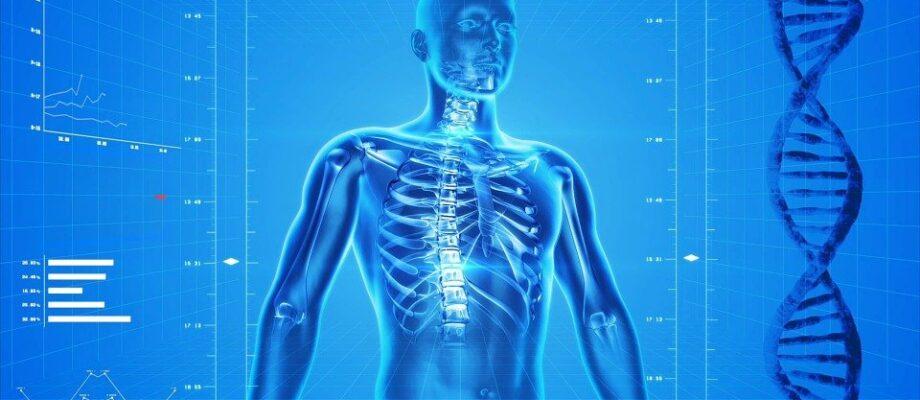 What to Know about an Orthopedist in Querétaro (Ortopedista en Querétaro)?