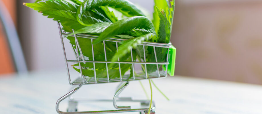 Want to Buy Cannabis Online? 7 Top Tips for Safe Cannabis Shopping